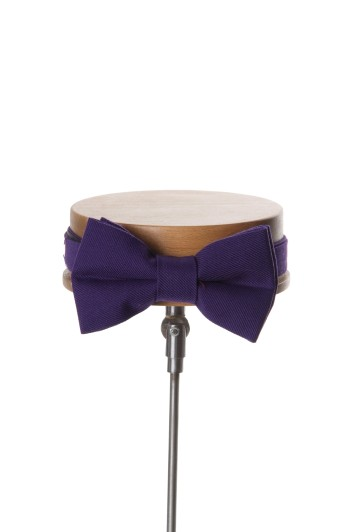 Ascot purple Grooms wedding bow tie